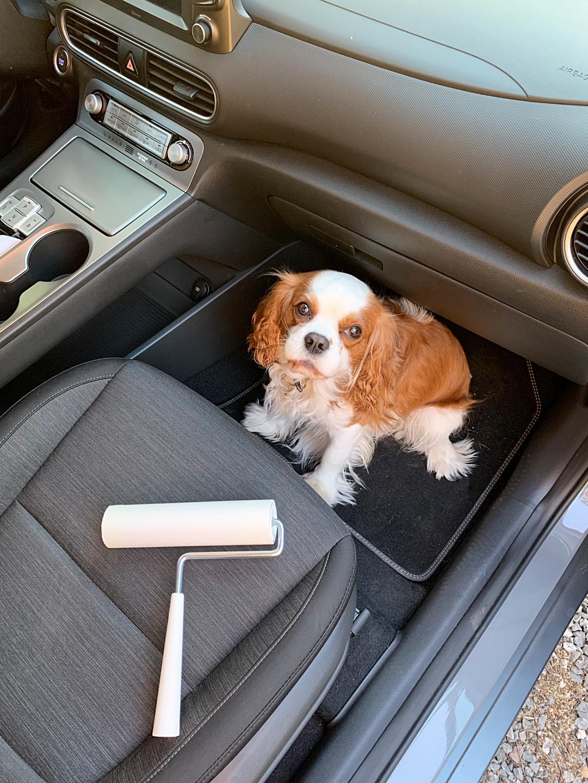 Tarraharja Autossa